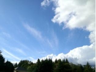 2012.10.1.jpg