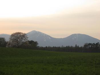 090501shizu3.JPG