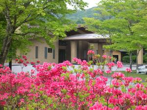 090521sakagami.jpg