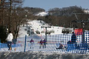 2008311%20skipark1.jpg