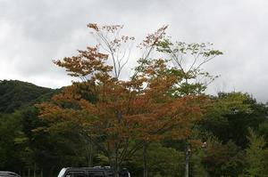 asama20110922.4jpg.jpg