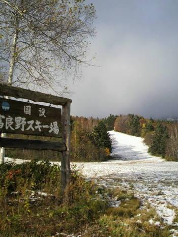 201010274.jpg.JPG