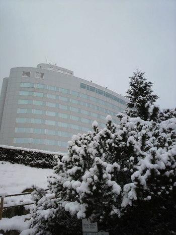 20101274.jpg.JPG.jpg