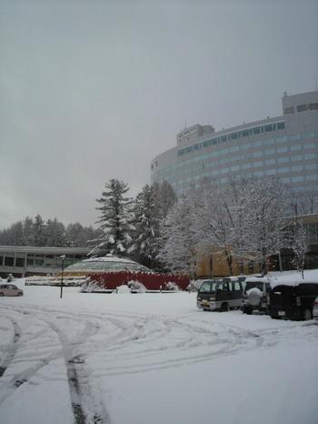 20101276.jpg.JPG.jpg