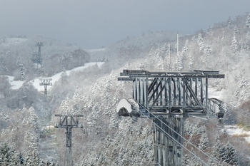 2011.11.15r1.JPG