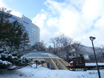 2012.11.19.JPG