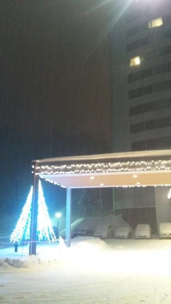 2012.12.8.JPG
