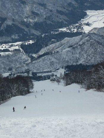 20110105shisatsu6.jpg