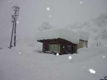 20110107hakkai1.jpg