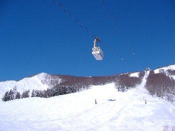 20110308hakkai1.jpg