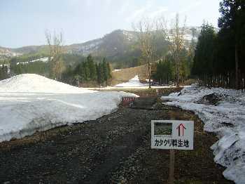 20110503.jpg