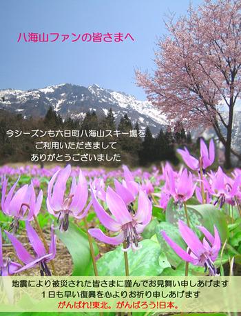 2011hakkai_ski_LAST.jpg