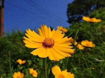 20120629hakkai.jpg