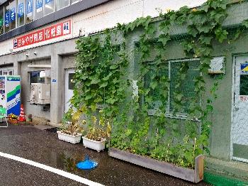 20120712hakkai1.jpg