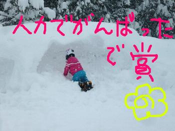 20130119hakkai1.jpg