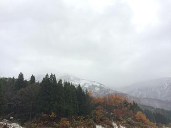 20141116_2.JPG