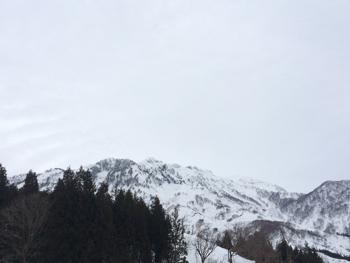 20150106_1.JPG