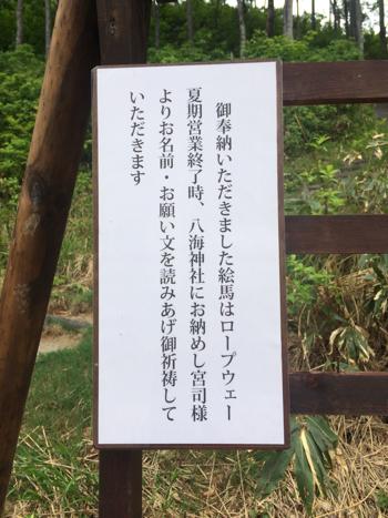 20150614_17.JPG