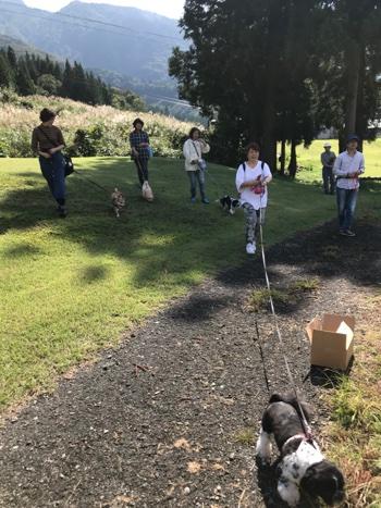 20180924_dog1.JPG
