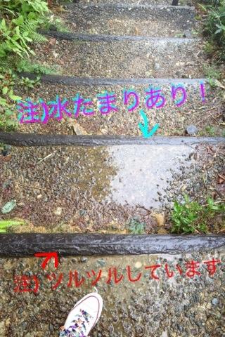 IMG_2239_20120622_4.jpg