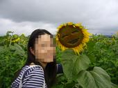 blog_himawari_3.jpg