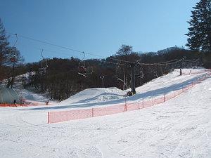 2009011707.jpg