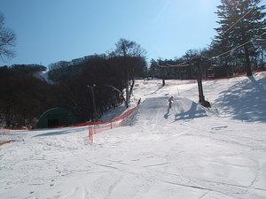 2009011708.jpg