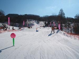 2009011713.jpg