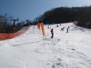 2009021504.jpg