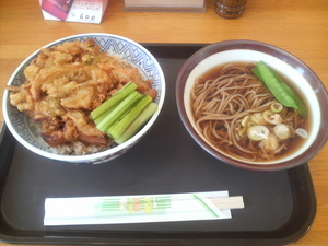 karusuki0472.JPG