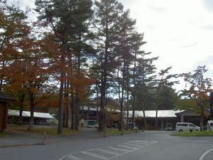 sakuburo029.JPG