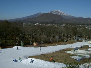 sakuburo116-4.JPG