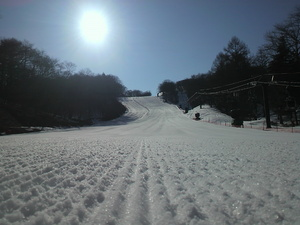 sakuburo266.jpg