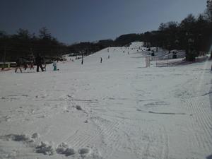 sakuburo372.JPG