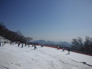 sakuburo373.jpg