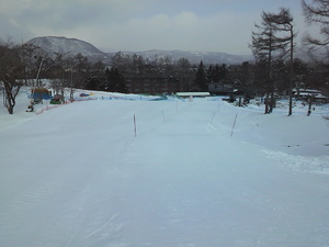 sakuburo412.JPG