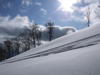 20100107shizu4.jpg
