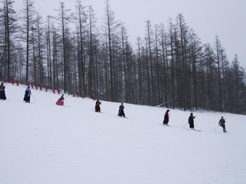 20100112shizu1.jpg