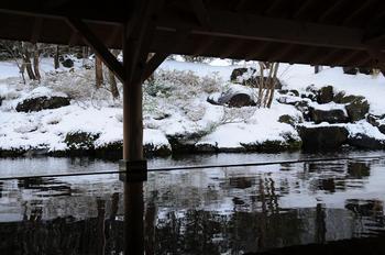20100116shizu26.JPG