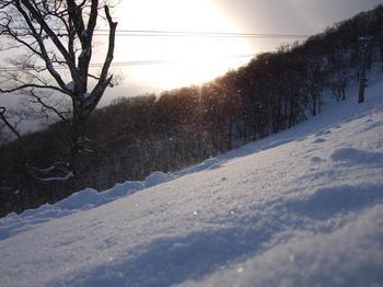 20100117shizu16.jpg