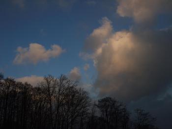 20100124shizu9.jpg