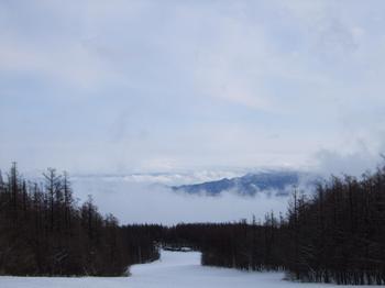 20100128shizu3.jpg