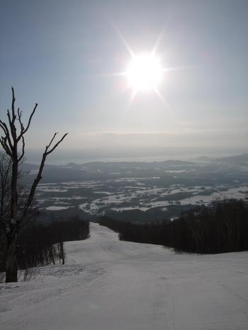20100205shizu6.jpg