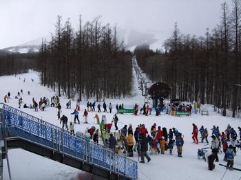 20100213shizu7.jpg