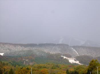 2010_1103shizu1.jpg