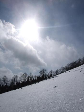20110122shiz12.jpg