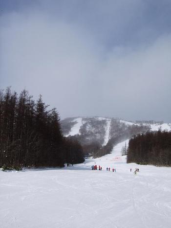 20111224shiz.jpg