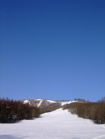 20111230shiz2.jpg