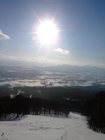 20120108shiz3.jpg