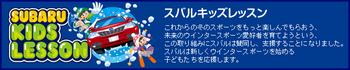 subaru-banner20110119shiz.jpg